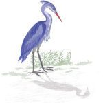 Heron by the lake vector without gradients